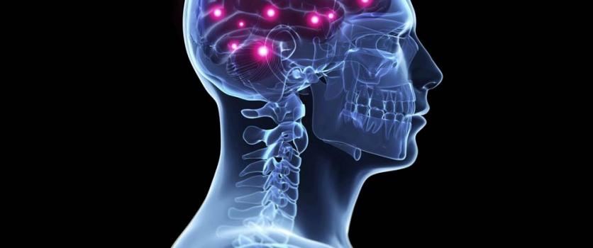 CÉREBRO X EXERCÍCIO FÍSICO:   Praticar uma atividade física influencia na saúde cerebral